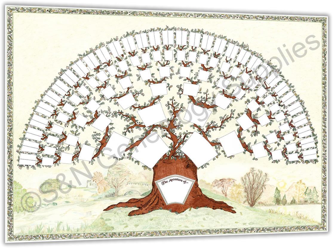 Oak Chart