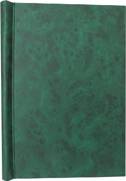 A4 Green Deluxe Family History Springback Binder - Untitled