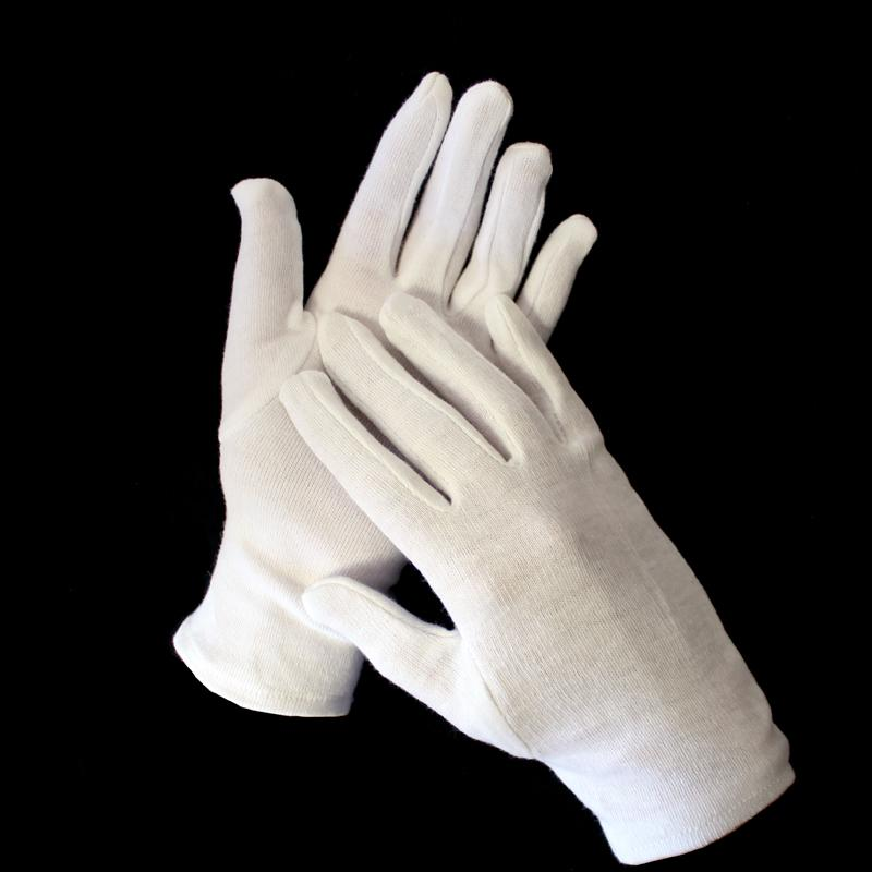 Archival Quality Cotton Gloves (Large)