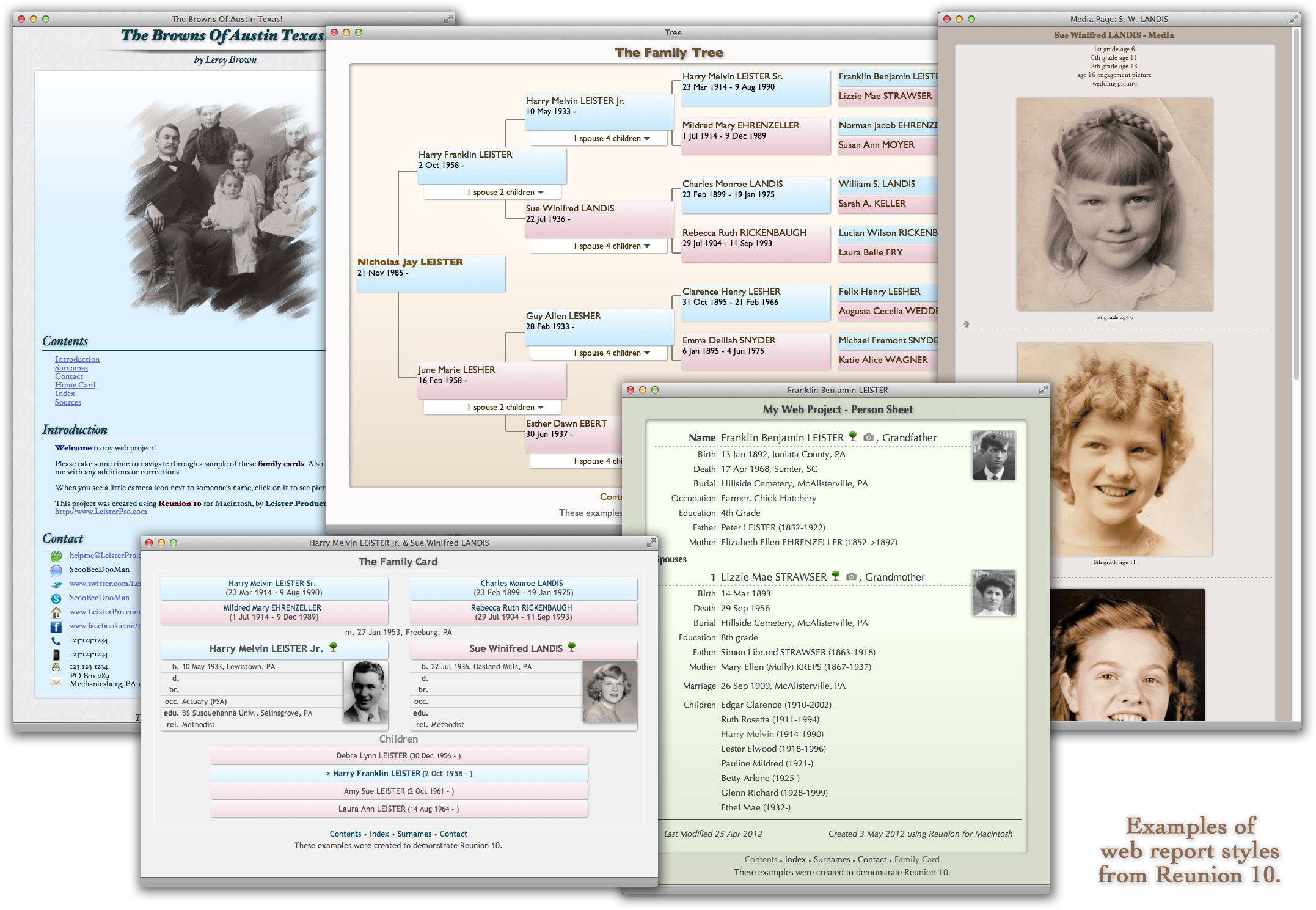 reunion 12 for the mac digital download s n genealogy supplies