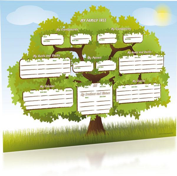 colour the family oak a3 tree chart junior s n genealogy supplies