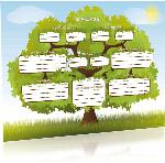 Colour 'The Family Oak' A3 Tree Chart, Junior (Folded)